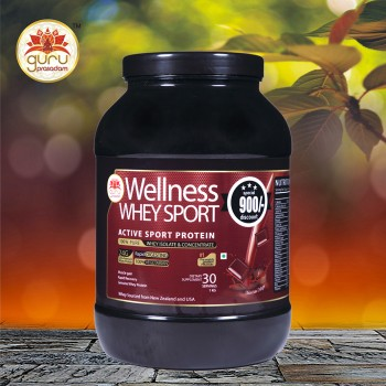 Wellness Whey Sports Protein Chocolate F...