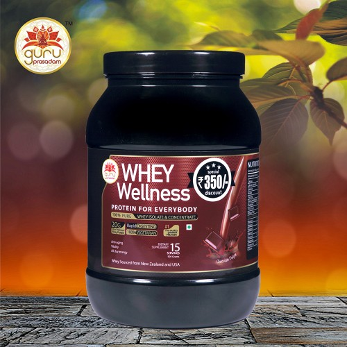 Wellness Protein Chocolate Flavor